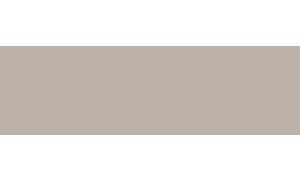 Logo Capital gris