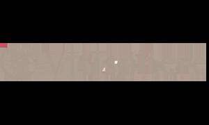 Logo Vitisphere gris